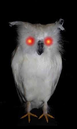 Light Up White Owl