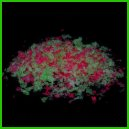 Wedding Confetti, Biodegradable, pink & green