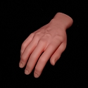 Realistic Severed Right Human Hand