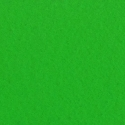 Digital Spandex Green Screen  12' x 12' Daily Rental