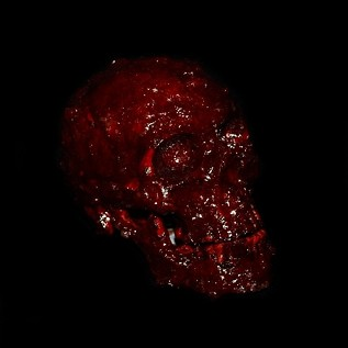 Bloody Scab Resin Skull