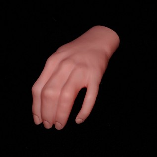 Realistic Severed Left Human Hand