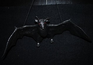 Flying Bat Open Wing