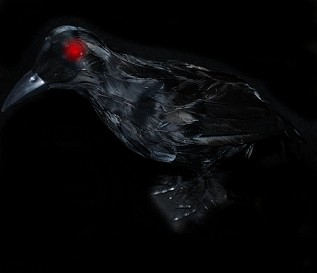Realistic Crow w/ Light-up Eyes and Sounds