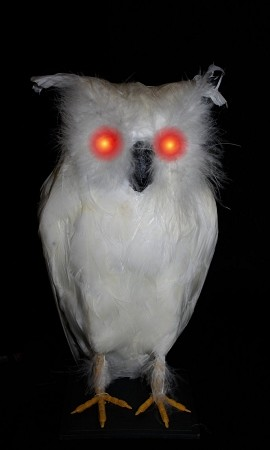 Light-up White Owl