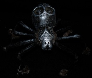 Scary Spider with Skull Body