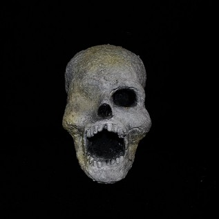 Decaying Resin Skull
