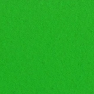 Digital Spandex Green Screen 20' x 30' Daily Rental