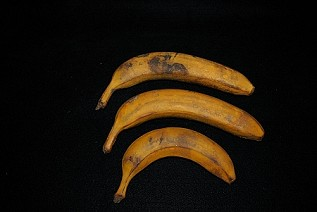 Rubber Bananas Daily Rental