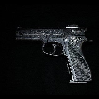 Smith & Wesson Automatic Handgun Daily Rental